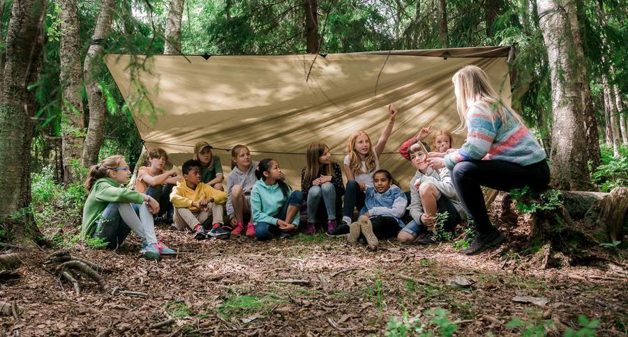 Fagfornyelsen: Skogen som læringsarena